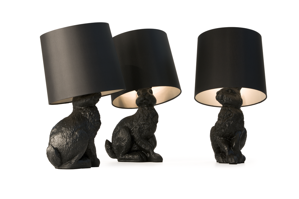 Rabbit lamp group with different point of view