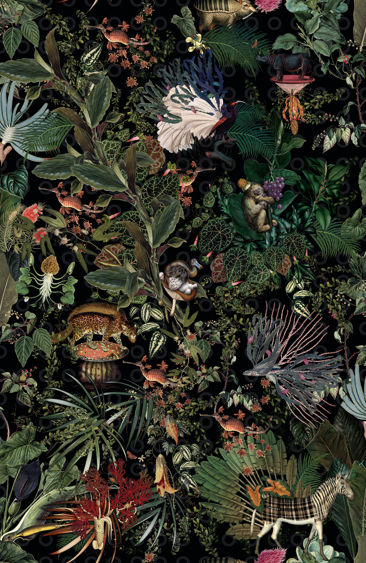 Moooi Wallcovering Menagerie of Extinct Animals Raven